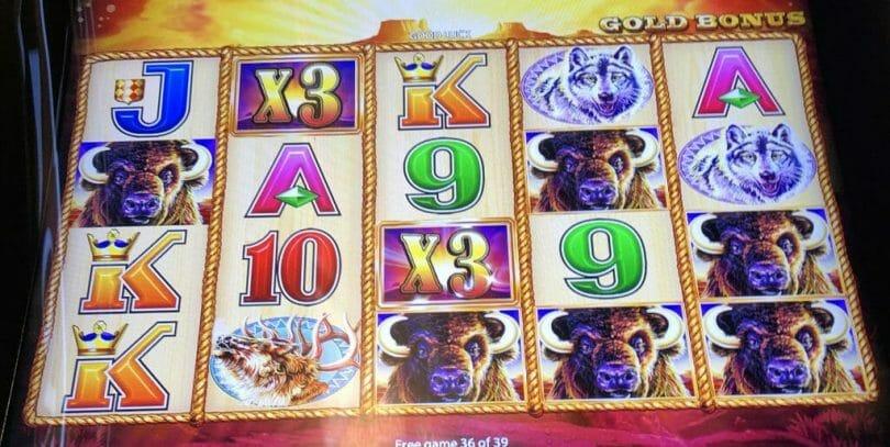 Buffalo Gold by Aristocrat 9x multiplier $27 a line x8