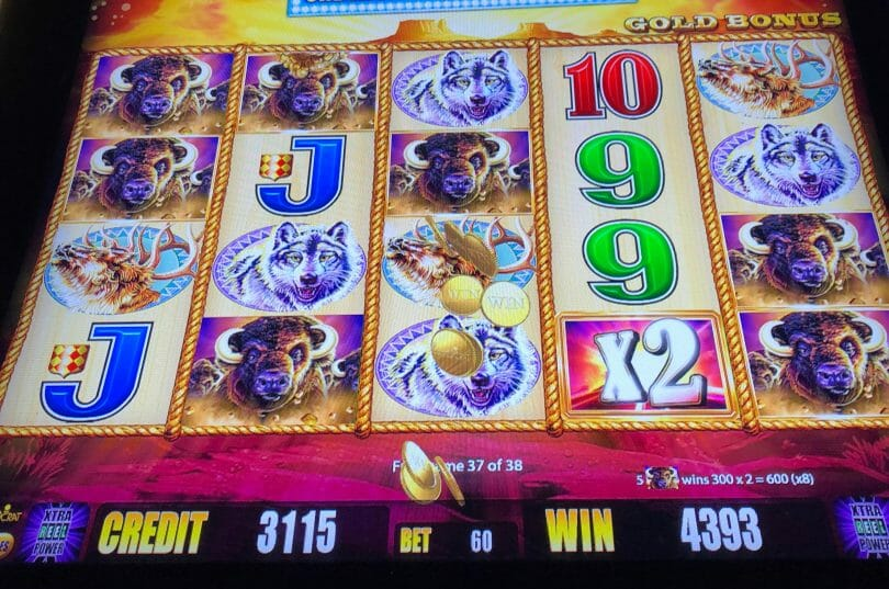 Buffalo Gold 80x hit in bonus