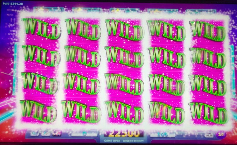 Wheel of Fortune 4D full screen of wilds