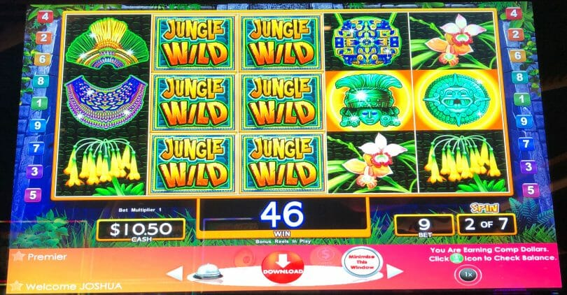 Jungle Wild by WMS two wild reels bonus spin