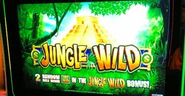 Jungle Wild by WMS top box