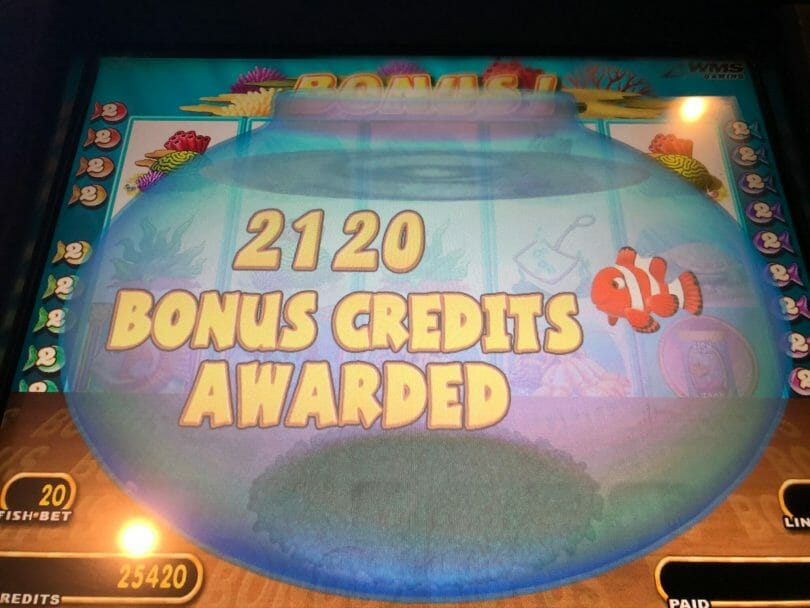 Goldfish by WMS bonus credits awarded