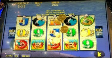 Whales of Cash by Aristocrat big win