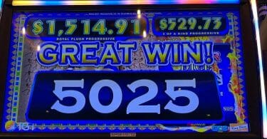 Pharoah's Fortune by IGT big win