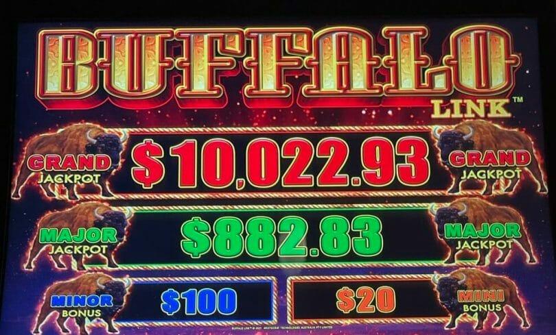 Buffalo Link by Aristocrat jackpots